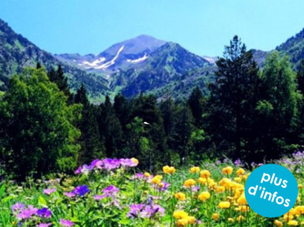 andorre montagne